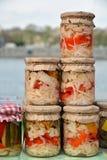 Συντηρημένα λαχανικά στα βάζα γυαλιού Στοκ εικόνα με δικαίωμα ελεύθερης χρήσης