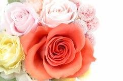 Συντηρημένα λουλούδια Στοκ Φωτογραφία