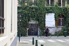Συντηρημένα παλαιά κατοικημένα και εμπορικά κτήρια ευρωπαϊκός-ύφους στις οδούς της πόλης των Βρυξελλών, Βέλγιο Στοκ Εικόνες