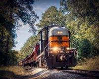 Συντηρημένη ατμομηχανή που μεταφέρει ένα τραίνο Στοκ Φωτογραφίες
