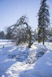 Συντηρημένη φυσική περιοχή Kladska κοντά στη μικρή πόλη Marianske Lazne Marienbad δυτικής Βοημίας SPA - Δημοκρατία της Τσεχίας Στοκ φωτογραφίες με δικαίωμα ελεύθερης χρήσης