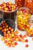 Συντηρώντας τα δαμάσκηνα κορόμηλων - βάζα των σπιτικών κονσερβών φρούτων Στοκ εικόνες με δικαίωμα ελεύθερης χρήσης