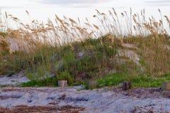 συντρίβοντας κύματα ακτών Στοκ φωτογραφία με δικαίωμα ελεύθερης χρήσης