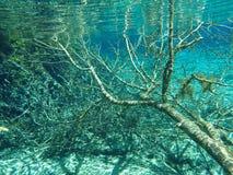 Συντρίμμια νερού Στοκ Φωτογραφίες