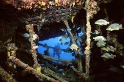 συντρίμμια Ροδανού Στοκ φωτογραφία με δικαίωμα ελεύθερης χρήσης