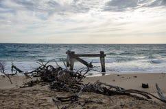 Συντρίμμια στην παραλία Στοκ εικόνα με δικαίωμα ελεύθερης χρήσης