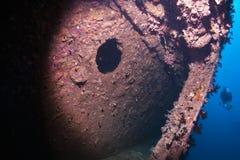 συντρίμμια των Μαλβίδων Βικτώρια Στοκ φωτογραφία με δικαίωμα ελεύθερης χρήσης