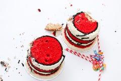 Συντριβή κέικ για τα δίδυμα μωρά Στοκ εικόνες με δικαίωμα ελεύθερης χρήσης