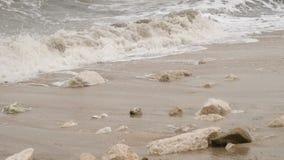 Συντριβή κυμάτων θάλασσας στην ακτή απόθεμα βίντεο