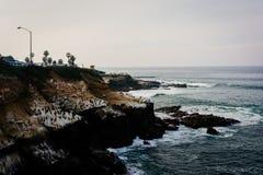 Συντριβή κυμάτων στους απότομους βράχους κατά μήκος του Ειρηνικού Ωκεανού στη Λα Χόγια, Calif στοκ εικόνα