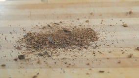 Συντριμμένος δρύινος φλοιός που αφορά μια ξύλινη επιφάνεια φυτικές πρώτες ύλες για την προετοιμασία των ποτών τσαγιού, ιατρική απόθεμα βίντεο