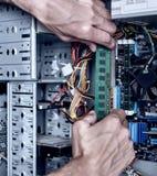 Συνδέοντας κριός με τον υπολογιστή Στοκ Εικόνες