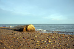 Συνδεθείτε την παραλία στοκ φωτογραφία