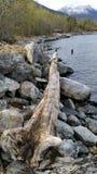 Συνδεθείτε τους βράχους Στοκ φωτογραφίες με δικαίωμα ελεύθερης χρήσης