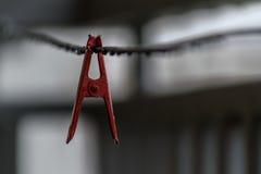 Συνδετήρες πλυντηρίων Στοκ Εικόνα