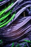 Συνδεδεμένος, καλώδια δικτύων στον κεντρικό υπολογιστή Στοκ Φωτογραφίες