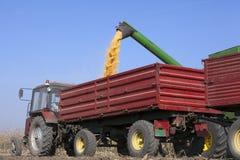 Συνδυάστε τη θεριστική μηχανή χύνει τους σπόρους αραβόσιτου καλαμποκιού Στοκ φωτογραφία με δικαίωμα ελεύθερης χρήσης