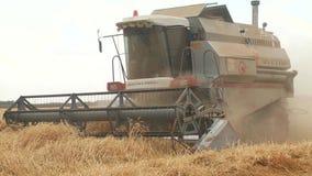 συνδυάστε τις ώριμες ξηρές εγκαταστάσεις μπιζελιών συγκομιδών μηχανών στο αγρόκτημα φιλμ μικρού μήκους