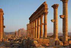 Συριακή archeological περιοχή Palmyra στην ανατολή Στοκ εικόνες με δικαίωμα ελεύθερης χρήσης