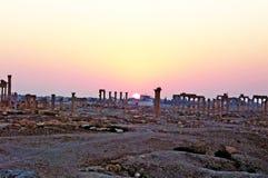 Συριακή archeological περιοχή Palmyra στην ανατολή Στοκ φωτογραφία με δικαίωμα ελεύθερης χρήσης