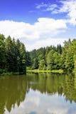 συρμένα διανυσματικά άσπρα δάση λιμνών απεικόνισης χεριών Στοκ εικόνα με δικαίωμα ελεύθερης χρήσης