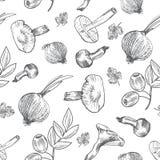 Συρμένα τα χέρι λαχανικά σκίτσων, διανυσματικό σχέδιο ξεφυτρώνουν, ελιά, πιπέρι, κρεμμύδι που απομονώνεται στο λευκό, ιδανικό για απεικόνιση αποθεμάτων