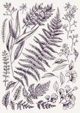 συρμένα φθινόπωρο φύλλα χ&epsilo Στοκ φωτογραφία με δικαίωμα ελεύθερης χρήσης