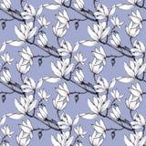 Συρμένα χέρι λουλούδια magnolia σχεδίων άνευ ραφής στο μπλε υπόβαθρο απεικόνιση αποθεμάτων