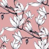 Συρμένα χέρι λουλούδια magnolia σχεδίων άνευ ραφής στο ρόδινο υπόβαθρο ελεύθερη απεικόνιση δικαιώματος