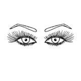 Συρμένα χέρι μάτια με τα μακροχρόνια eyelashes Γυναίκες, θηλυκό μάτι με ένα φρύδι Στοκ Εικόνες