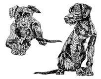 Συρμένα χέρι σκυλιά Στοκ φωτογραφία με δικαίωμα ελεύθερης χρήσης