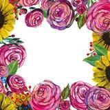 Συρμένα χέρι σύνορα λουλουδιών Στοκ Εικόνα