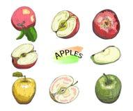 Συρμένα χέρι χρωματισμένα μήλα καθορισμένα απομονωμένα στο άσπρο υπόβαθρο διανυσματική απεικόνιση