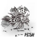 Συρμένα χέρι ψάρια θάλασσας Στοκ Φωτογραφία