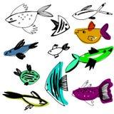 Συρμένα χέρι ψάρια χρώματος θάλασσας Στοκ φωτογραφίες με δικαίωμα ελεύθερης χρήσης