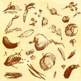 Συρμένα χέρι doodle τρόφιμα, λαχανικά Καφετιά αντικείμενα, κίτρινο άνευ ραφής υπόβαθρο watercolor Στοκ Εικόνα