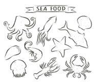 Συρμένες χέρι διανυσματικές απεικονίσεις θαλασσινών που απομονώνονται στο άσπρο υπόβαθρο, στοιχεία για το σχέδιο επιλογών εστιατο Στοκ Εικόνες