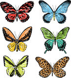 συρμένες χέρι πεταλούδες Στοκ εικόνα με δικαίωμα ελεύθερης χρήσης