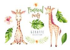 Συρμένες χέρι τροπικές εγκαταστάσεις watercolor καθορισμένες και giraffe Εξωτικά φύλλα φοινικών, δέντρο ζουγκλών, τροπικά στοιχεί ελεύθερη απεικόνιση δικαιώματος