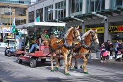 Συρμένη άλογο μεταφορά στην ημέρα Αγίου Πάτρικ ` s, Οττάβα, Καναδάς Στοκ Εικόνες
