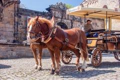 Συρμένη άλογο μεταφορά - γύρος Βαμβέργη πόλεων Στοκ φωτογραφίες με δικαίωμα ελεύθερης χρήσης