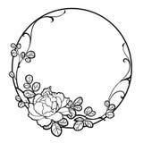 Συρμένη η χέρι ομάδα peony αυξήθηκε λουλούδι για διακοσμεί Στοκ Εικόνα