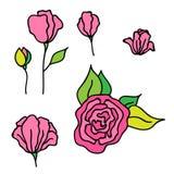 Συρμένη χέρι απεικόνιση με τα ρόδινα συμπαθητικά τριαντάφυλλα λουλουδιών Στοκ φωτογραφία με δικαίωμα ελεύθερης χρήσης