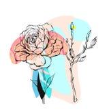 Συρμένη χέρι διανυσματική αφηρημένη δημιουργική ασυνήθιστη απεικόνιση με τα γραφικούς peony λουλούδια και τους κλάδους στα χρώματ Στοκ Εικόνες