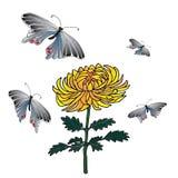Συρμένη χέρι σκιαγραφημένη απεικόνιση χρυσάνθεμων και πεταλούδων Στοκ Εικόνα