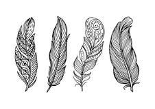 Συρμένη χέρι όμορφη συλλογή φτερών απεικόνιση αποθεμάτων