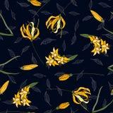 Συρμένη χέρι floral διανυσματική απεικόνιση Ιαπωνικά λουλούδια της Ασίας κρίνων άνοιξη σχεδίων κήπων άνευ ραφής διανυσματική απεικόνιση