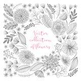 Συρμένη χέρι floral συλλογή Στοκ εικόνα με δικαίωμα ελεύθερης χρήσης