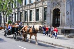 Συρμένοι άλογο γύροι μεταφορών στην πόλη του Κεμπέκ Στοκ Φωτογραφία
