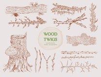 Συρμένοι χέρι ξύλινοι κλάδοι καθορισμένοι διανυσματική απεικόνιση